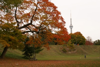 Toronto in the Autumn.